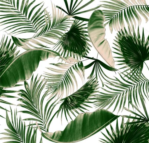 Zdjęcie liście